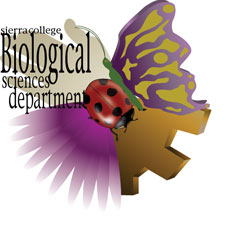 Decorative logo for the Biological Sciences Department